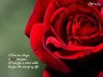 love-wallpaper3