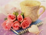 paper-cup-love-wallpapers-x